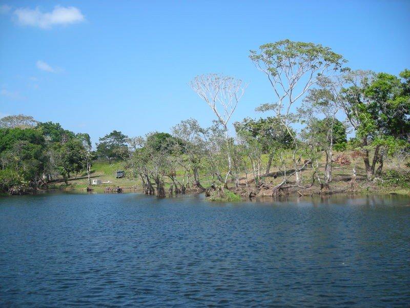 GATUN PALMS LAKE TO LOT VIEW
