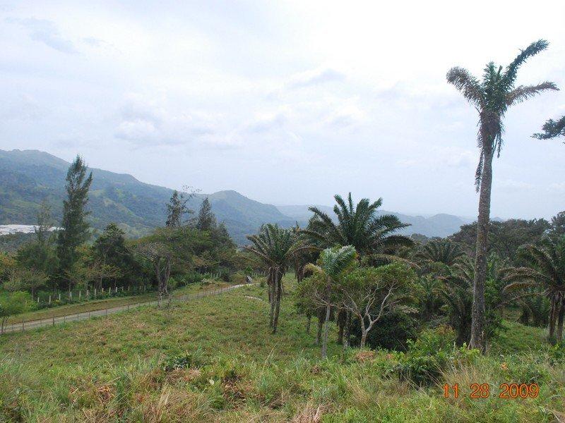sora-land01