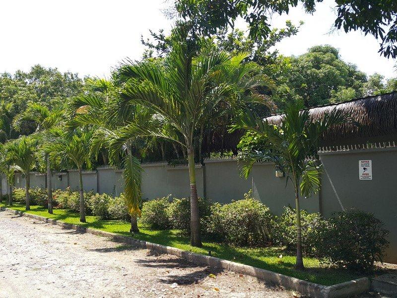 coronado-luxuury-home71