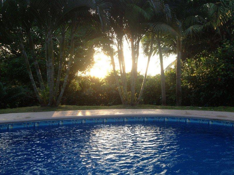 coronado-pool-home6