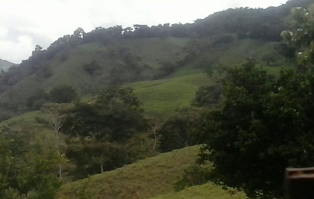 santiago-farm03