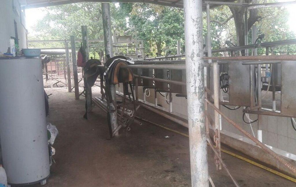santiago-farm04