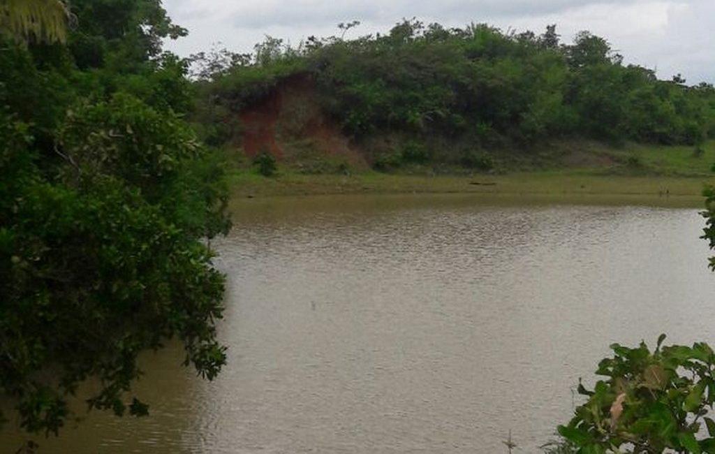 santiago-farm05