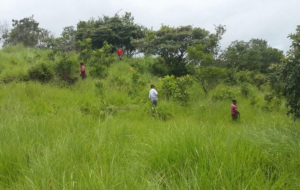 santiago-farm10