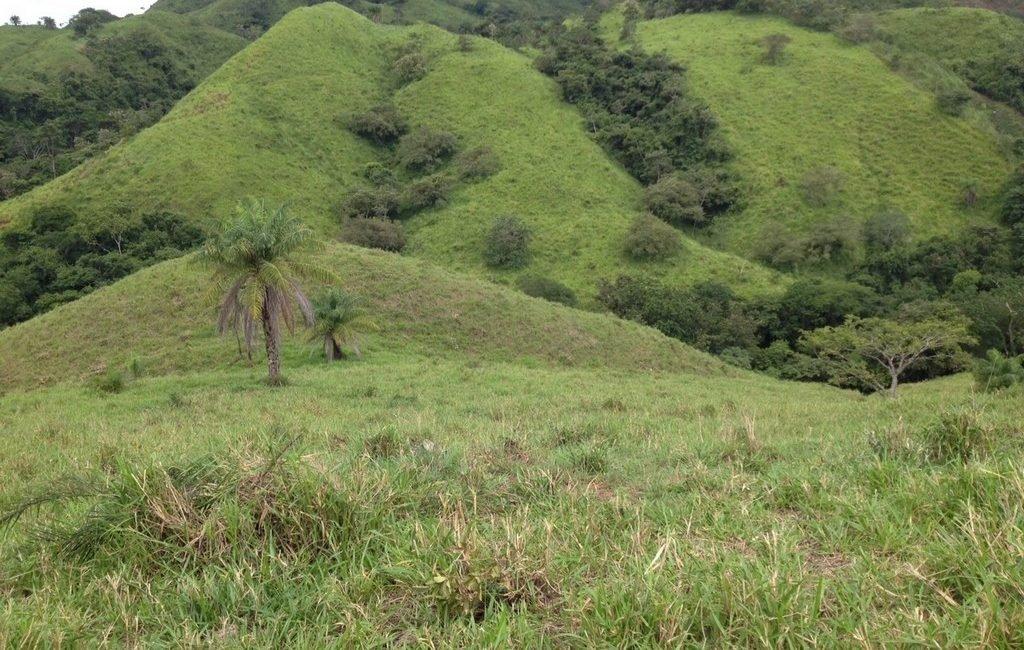 santiago-farm16