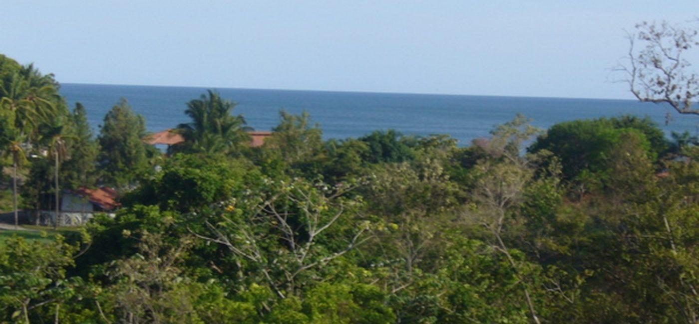 coronado-oceanview-lot01