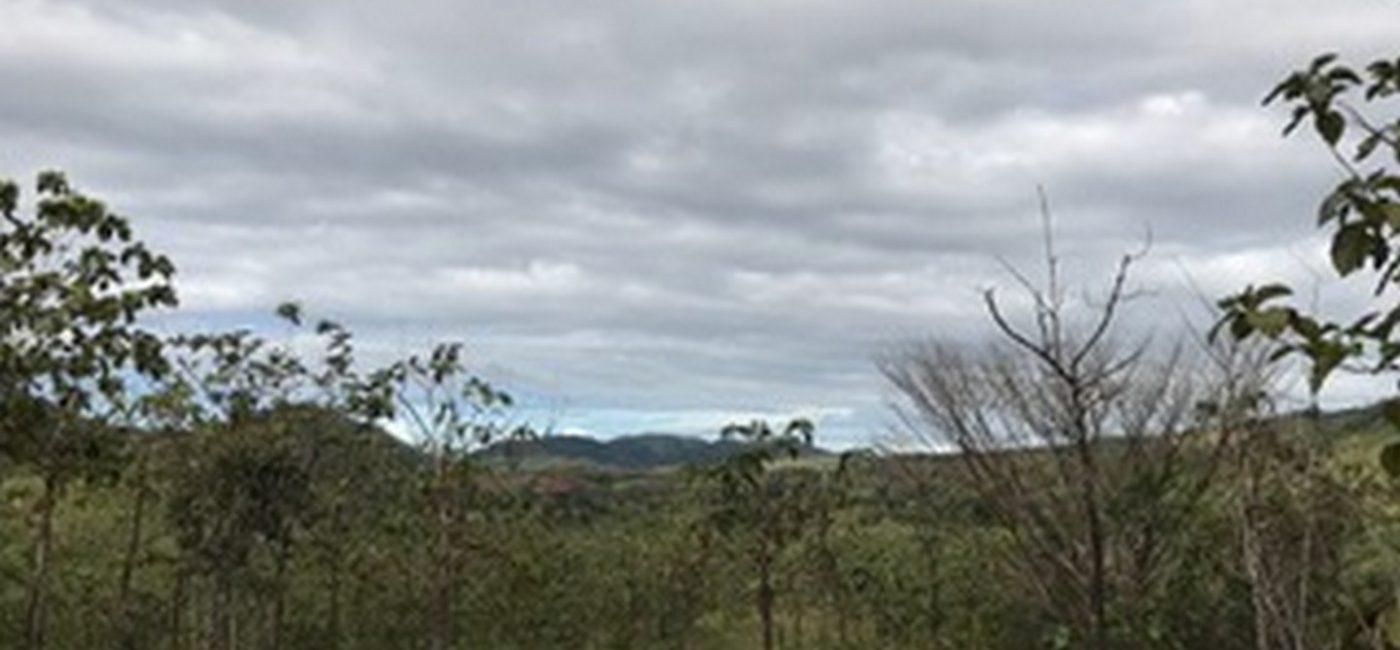 Veraguas-farm04