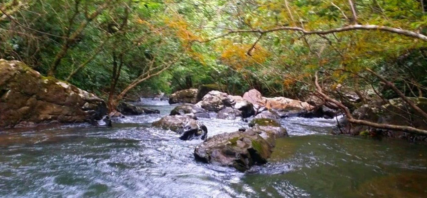Veraguas-waterfall10