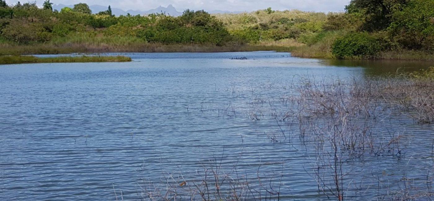 lago-mar02